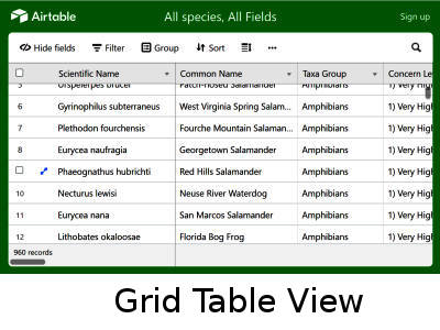 Grid Table View